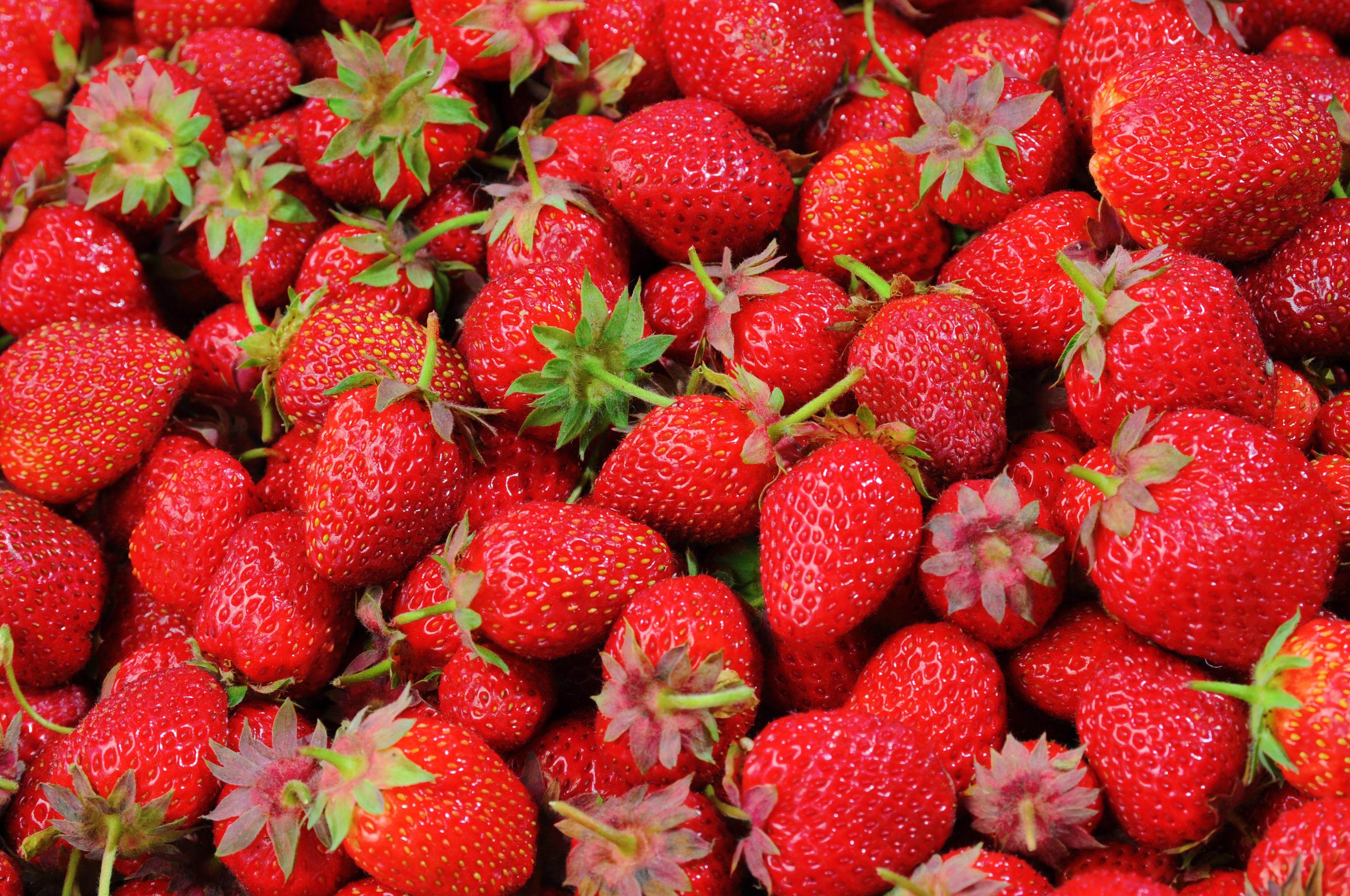 Strawberries Berries Fruit Freshness 46174